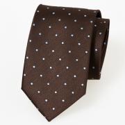 Braune Krawatte mit weißen Punkten